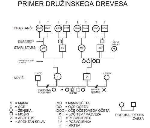 druzinsko_drevo